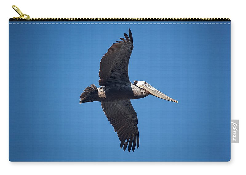Pelican Carry-all Pouch featuring the photograph flying Pelican by Ralf Kaiser