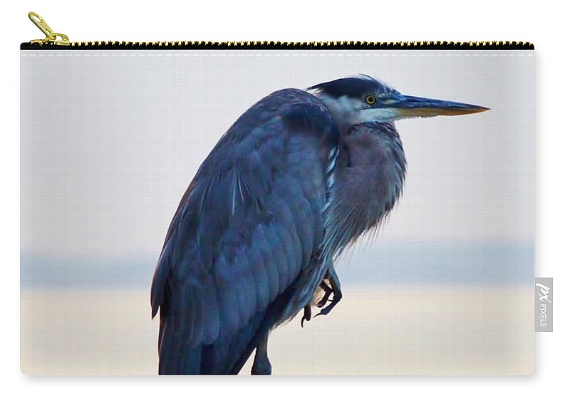 Aerial Carry-all Pouch featuring the photograph Foot Rest by William Bartholomew