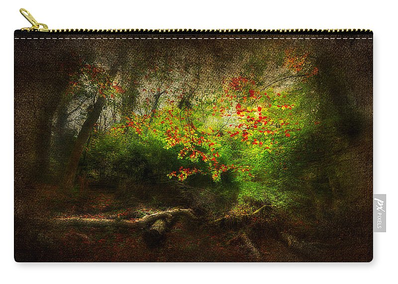 Autumn Carry-all Pouch featuring the photograph Forbidden Woods by Svetlana Sewell