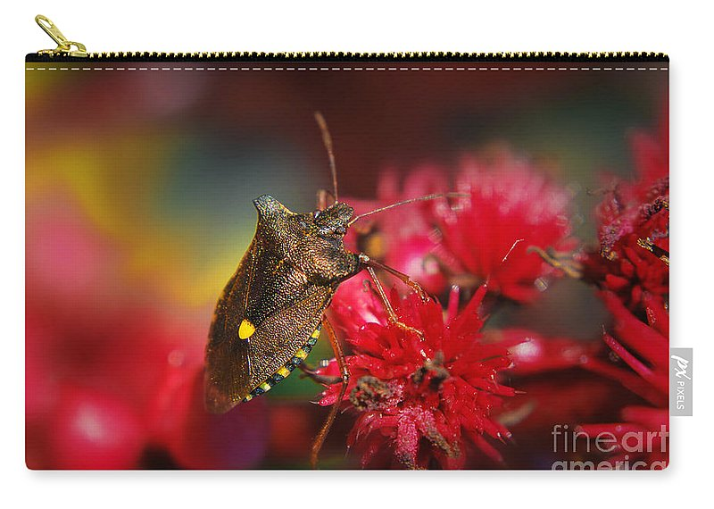Yhun Suarez Carry-all Pouch featuring the photograph Forest Bug - Pentatoma Rufipes by Yhun Suarez