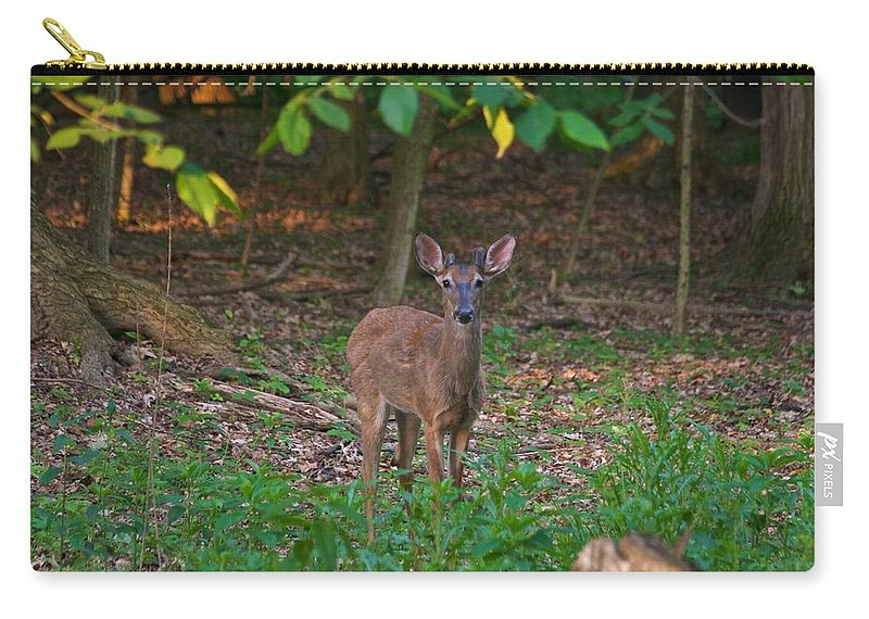 Animal Carry-all Pouch featuring the photograph Forest Edge 7365 1754 by Michael Peychich