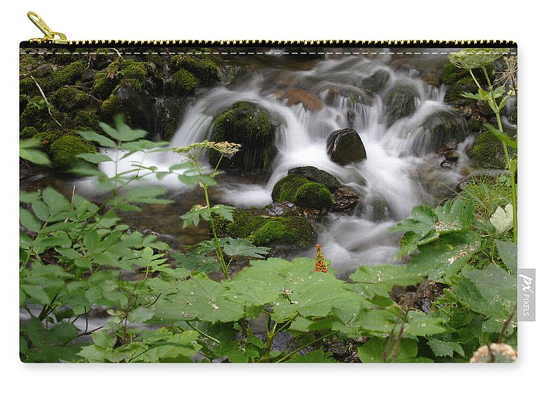 Doug Lloyd Carry-all Pouch featuring the photograph Forest Stream by Doug Lloyd