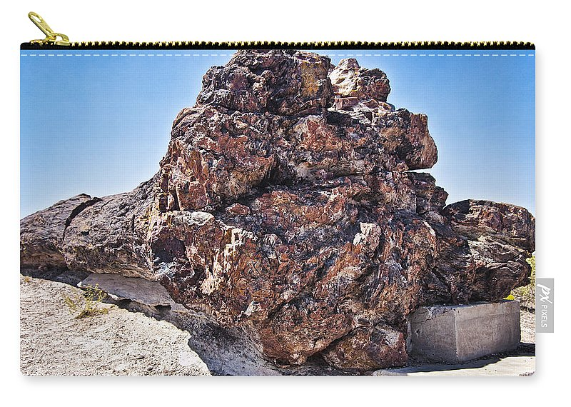 Petrified Forest Carry-all Pouch featuring the photograph Fossil Tree by Jon Berghoff