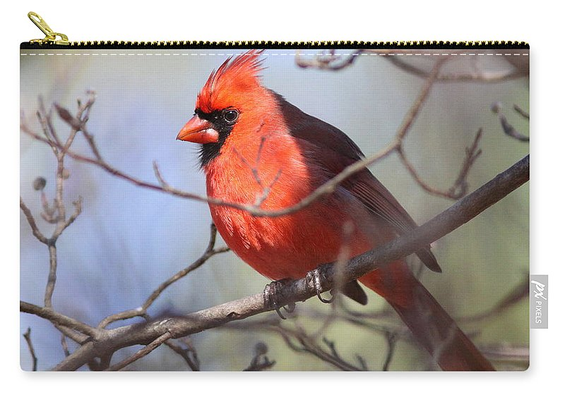 Carry-all Pouch featuring the photograph Framed by Travis Truelove