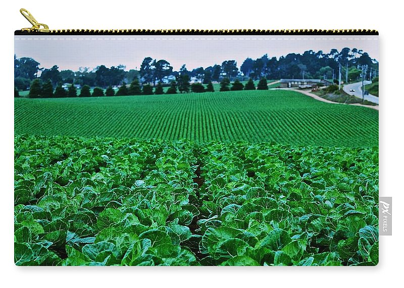 Cabbage Carry-all Pouch featuring the photograph Fresh Cabbage by Eric Tressler