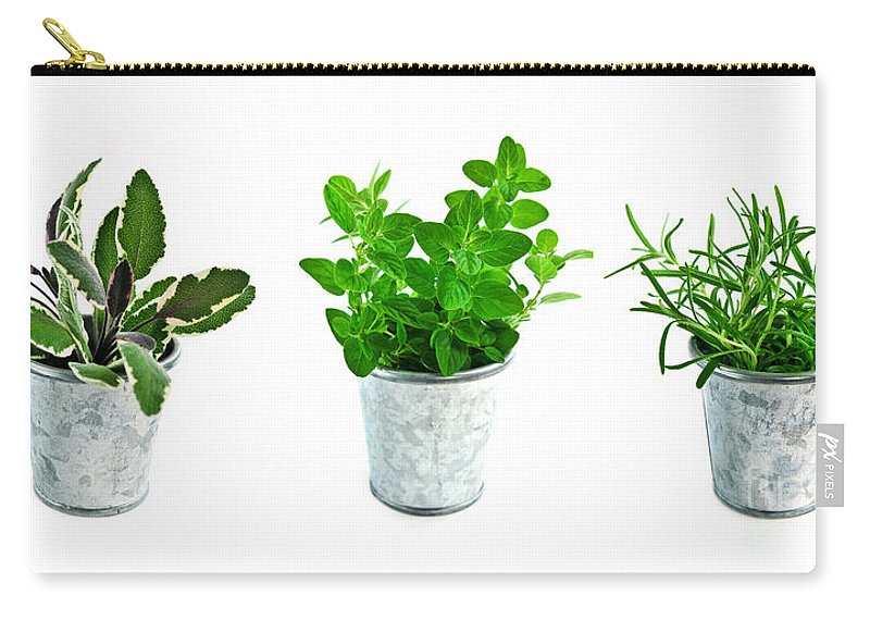 Herb Carry-all Pouch featuring the photograph Fresh Herbs by Elena Elisseeva