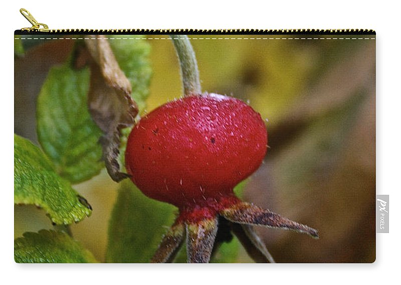 Flower Carry-all Pouch featuring the photograph Fresh Rose Hip by Susan Herber