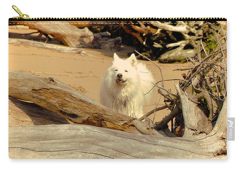 Dog Carry-all Pouch featuring the photograph Friend Along The Way by Trish Tritz