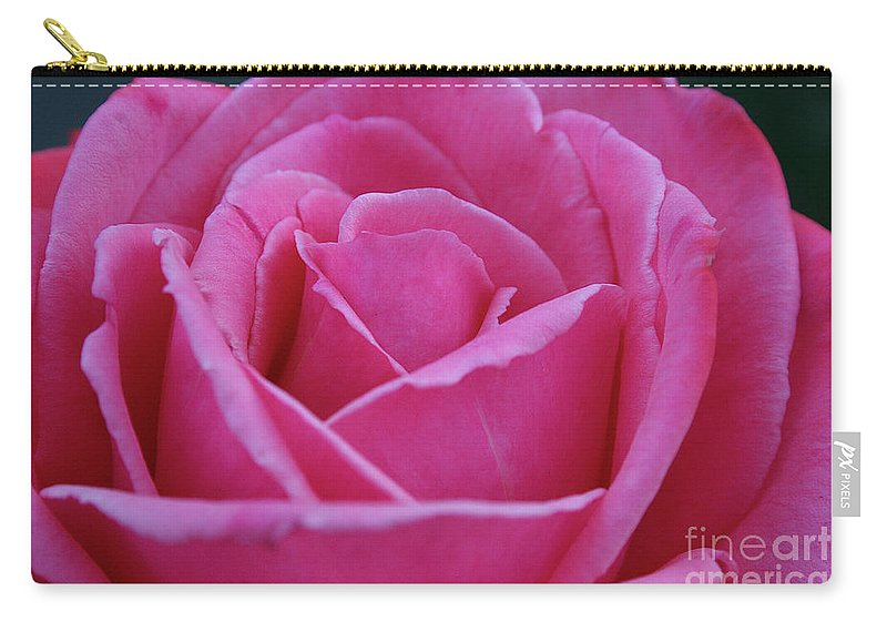 Outdoors Carry-all Pouch featuring the photograph Friendship by Susan Herber