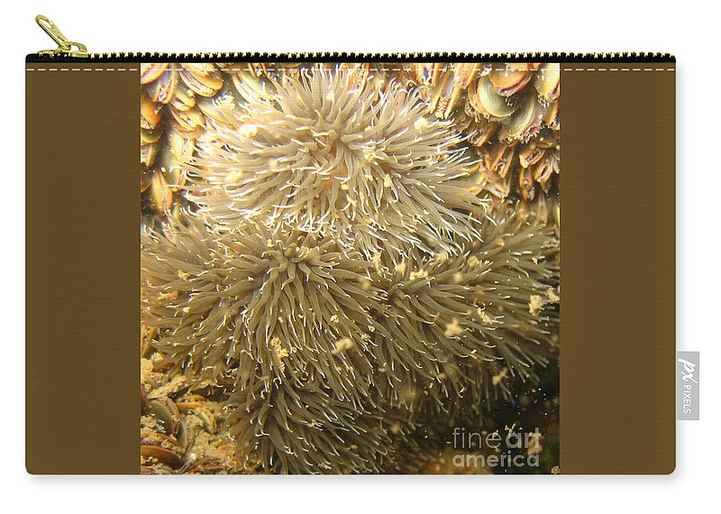 Sea Anemone Carry-all Pouch featuring the photograph Frilled Sea Anemone by Paul Ward