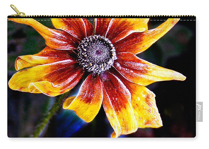 Flower Carry-all Pouch featuring the photograph Frosty Susan by Jean Noren