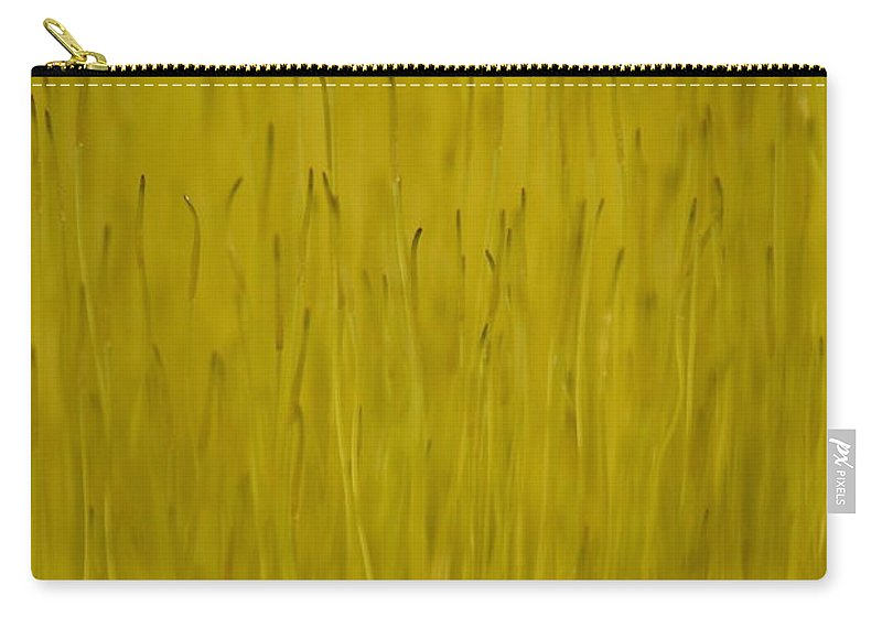J.d. Grimes Carry-all Pouch featuring the photograph Fruiting Moss by JD Grimes