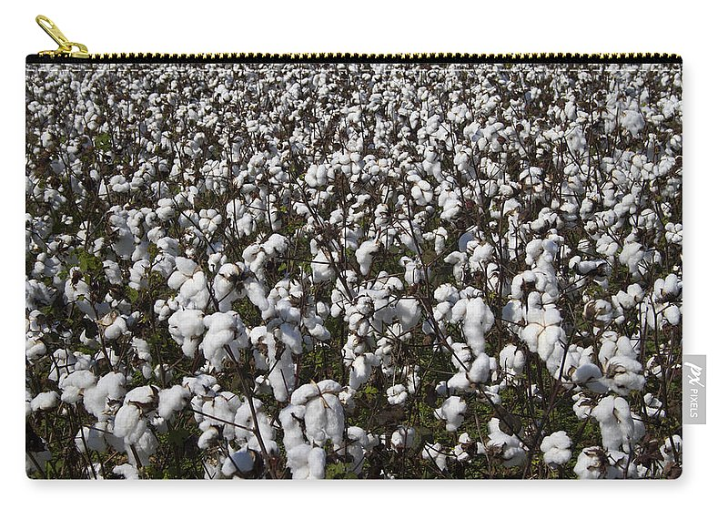 Cotton Carry-all Pouch featuring the photograph Full Frame Alabama Cotton Crop by Kathy Clark