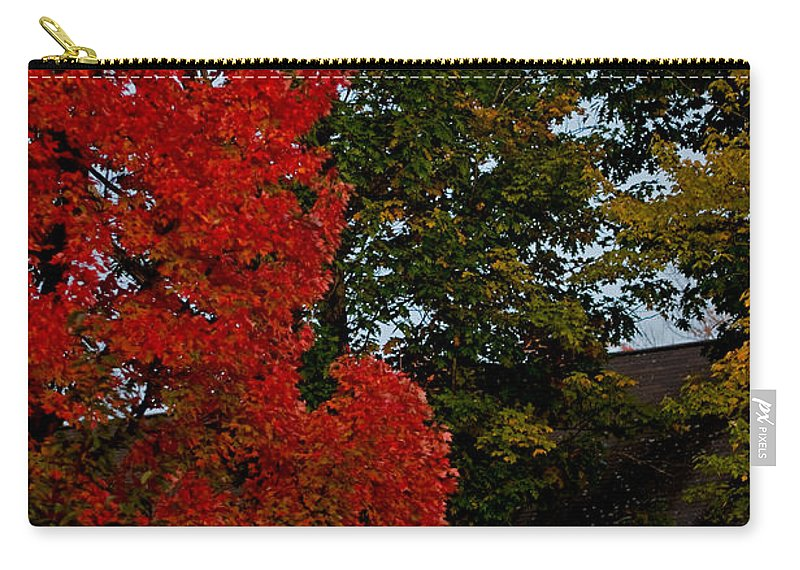 autumn Moonrise Carry-all Pouch featuring the photograph Full Moon Between The Trees by Paul Mangold