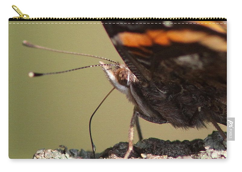 Swallowtail Butterfly Carry-all Pouch featuring the photograph Fur Coat And A Tottie by Travis Truelove