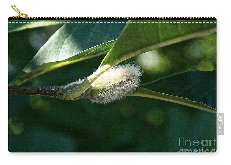 Tree Carry-all Pouch featuring the photograph Fuzzy Magnolia by Susan Herber