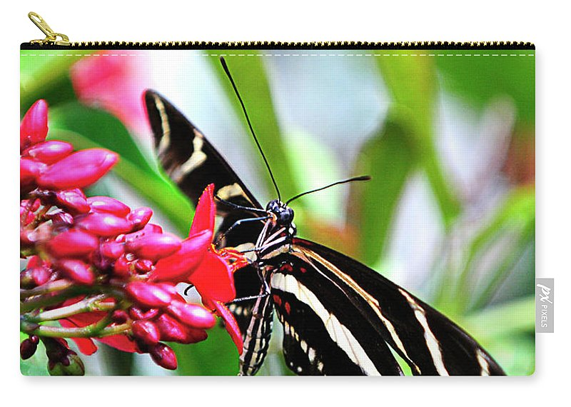 Garden Carry-all Pouch featuring the photograph Garden Zebra Longwing by Bill Dodsworth