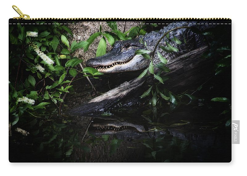Alligator Carry-all Pouch featuring the photograph Gator Reflect by Karol Livote