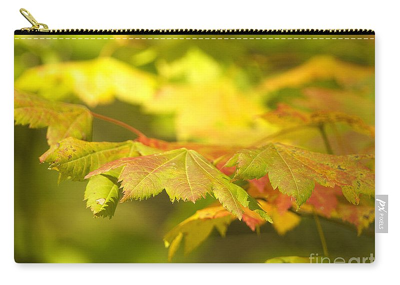 Maple Leaves Carry-all Pouch featuring the photograph Gentle Glow by Sharon Talson