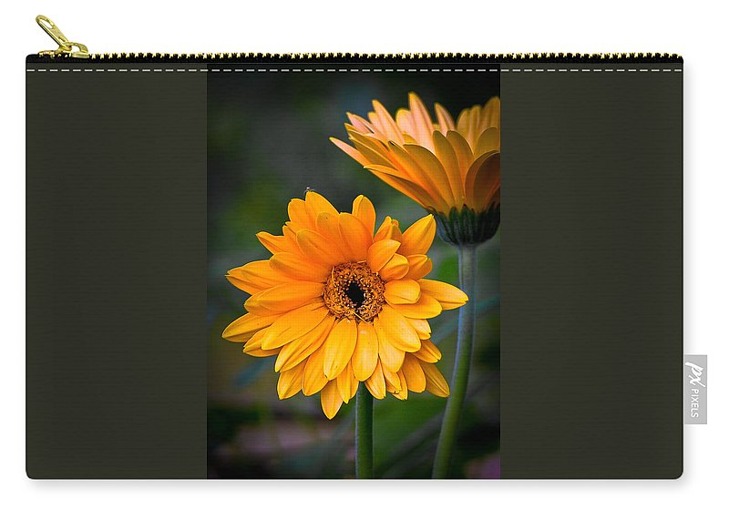 Flower Carry-all Pouch featuring the photograph Gerberas by Jean Noren