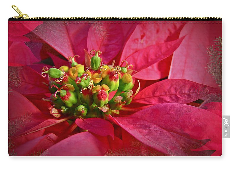 Poinsettia Carry-all Pouch featuring the photograph Get To The Heart Of It by Mother Nature