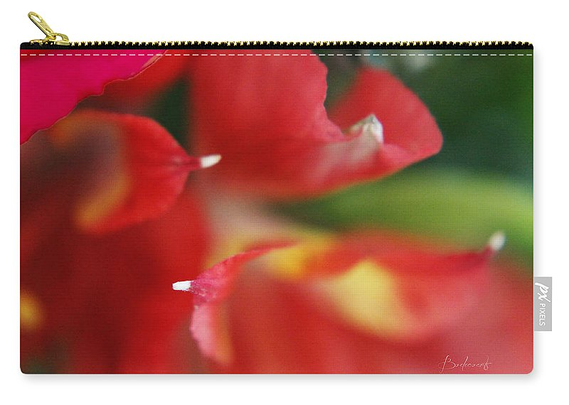 Stamen Carry-all Pouch featuring the photograph Get To The Point by Robin Lewis