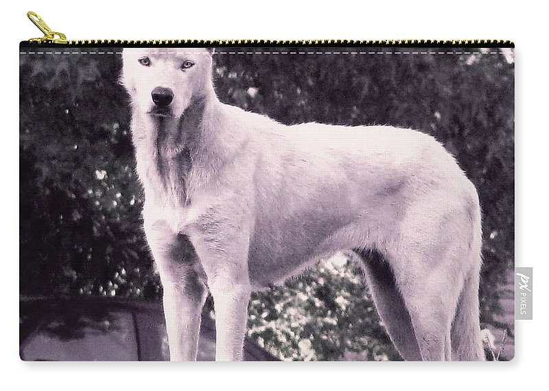Wolf Carry-all Pouch featuring the photograph Ghost The Wolf by Maria Urso