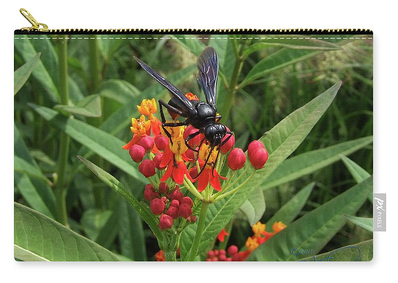 Sphex Pennsylvanicus Carry-all Pouch featuring the photograph Giant Wasp by S Paul Sahm