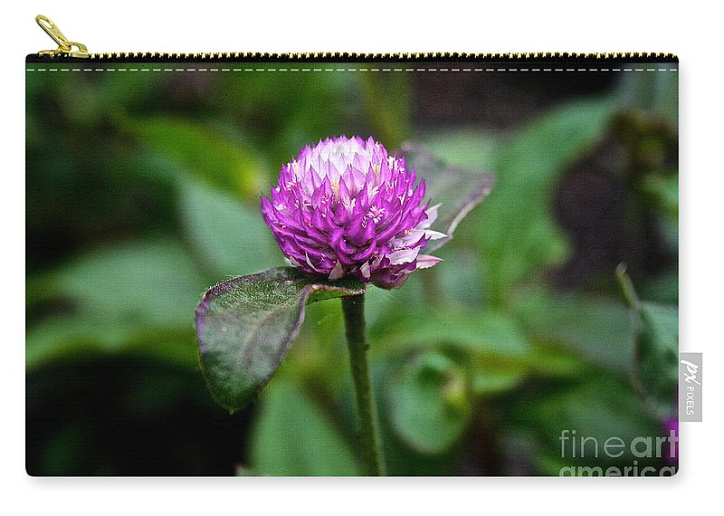 Floral Carry-all Pouch featuring the photograph Globe Amaranth Bicolor Rose by Susan Herber