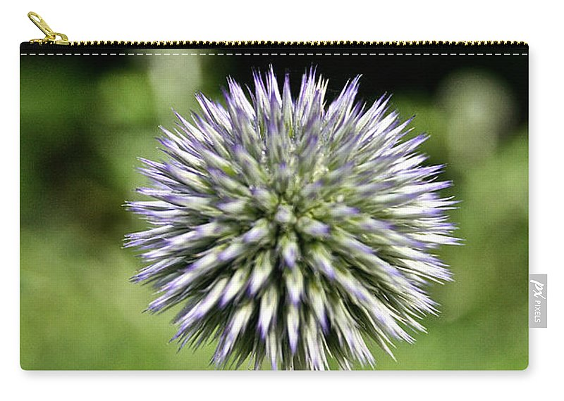 Floral Carry-all Pouch featuring the photograph Globe Thistle by Susan Herber