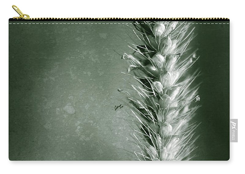 Canton Mi Carry-all Pouch featuring the photograph Glowing Grass Seedhead by Onyonet Photo Studios