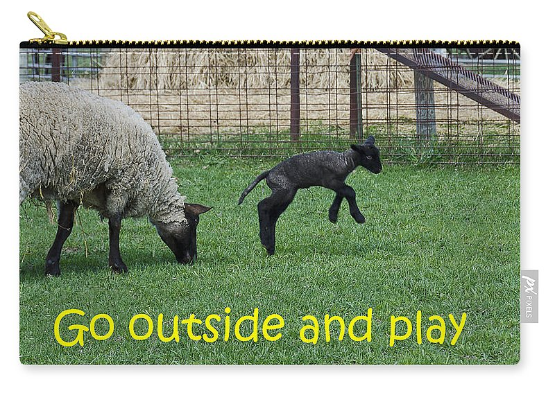 Usa Carry-all Pouch featuring the photograph Go Outside And Play by LeeAnn McLaneGoetz McLaneGoetzStudioLLCcom