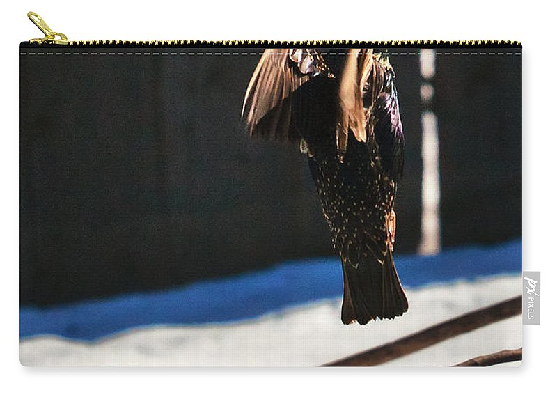 Heron Heaven Carry-all Pouch featuring the photograph Going Vertical by Edward Peterson