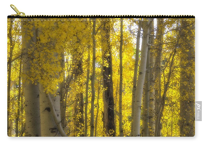 Fall Carry-all Pouch featuring the photograph Golden Autumn by Saija Lehtonen