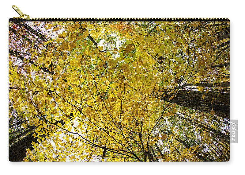 Autumn Photographs Carry-all Pouch featuring the photograph Golden Canopy by Rick Berk