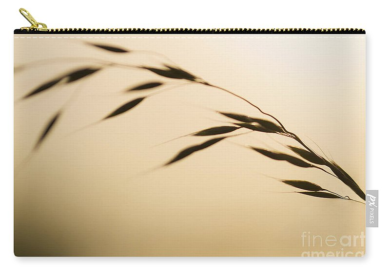 Clare Bambers Carry-all Pouch featuring the photograph Golden Grass. by Clare Bambers