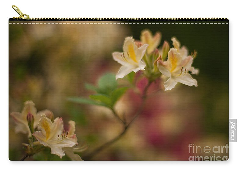 Rhodies Carry-all Pouch featuring the photograph Golden Morning by Mike Reid