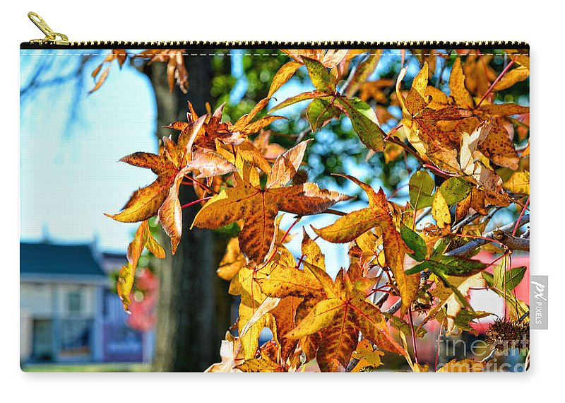 Nature Carry-all Pouch featuring the photograph Golden Sweetgum Leaves by Debbie Portwood