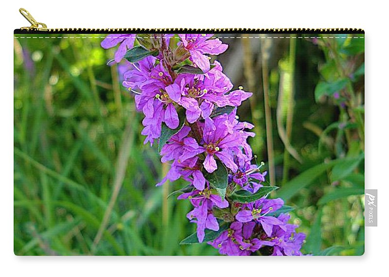 Fish Creek Carry-all Pouch featuring the photograph Good Fishing by Joseph Yarbrough