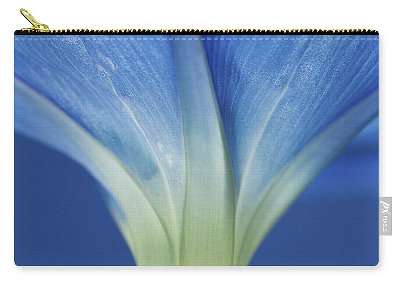 Morning Glory Carry-all Pouch featuring the photograph Good Morning Glory by Rich Franco