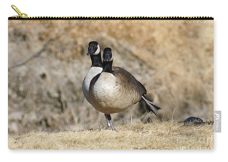 Goose Carry-all Pouch featuring the photograph Goose Exercises by Lori Tordsen