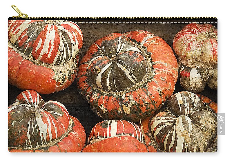 Fall Carry-all Pouch featuring the photograph Gorgeous Gourds by Jim And Emily Bush