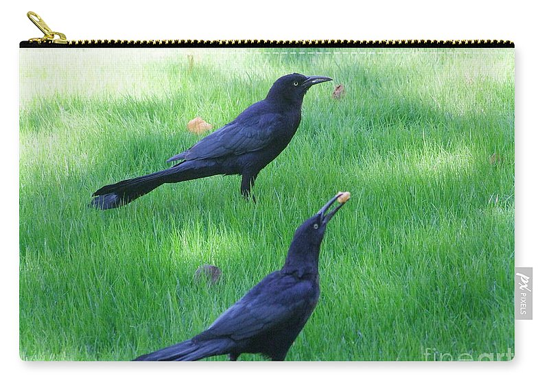 Grackles Carry-all Pouch featuring the photograph Grackles In The Yard by Mary Deal