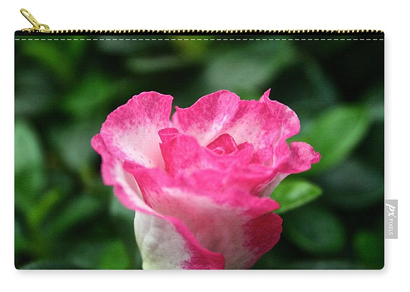 Tropical Plant Carry-all Pouch featuring the photograph Grand Opening by Susan Herber