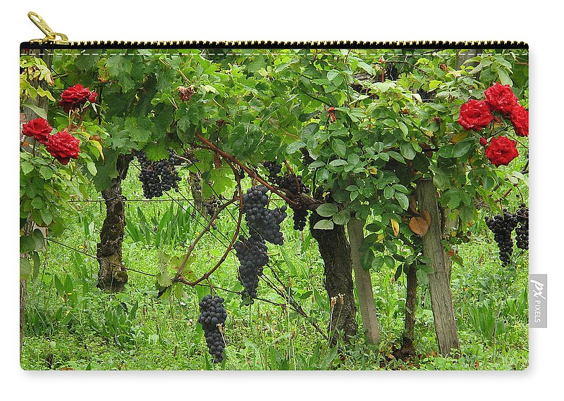Vineyard Carry-all Pouch featuring the photograph Grape Vines And Roses I by Greg Matchick