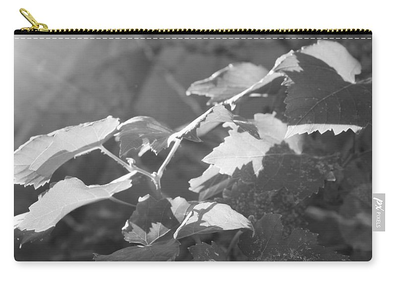 Grapevine Carry-all Pouch featuring the photograph Grapevine In Morning Light by Kume Bryant