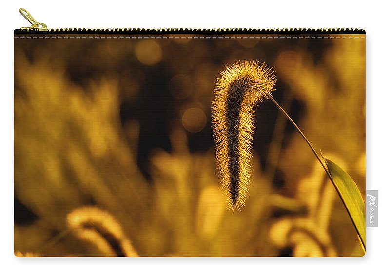 Da 18-135 Wr Carry-all Pouch featuring the photograph Grass In Golden Light by Lori Coleman