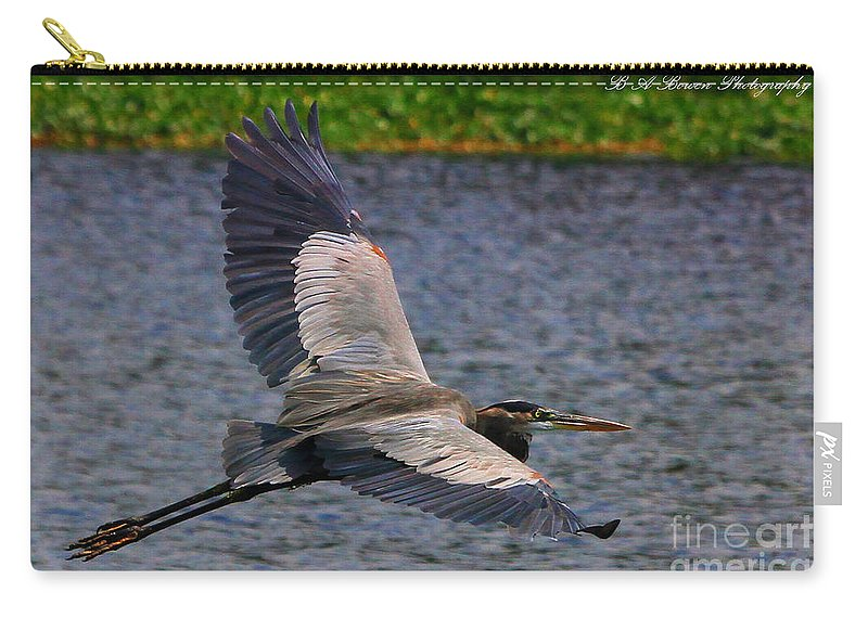 Great Blue Heron Carry-all Pouch featuring the photograph Great Blue Heron In Flight by Barbara Bowen