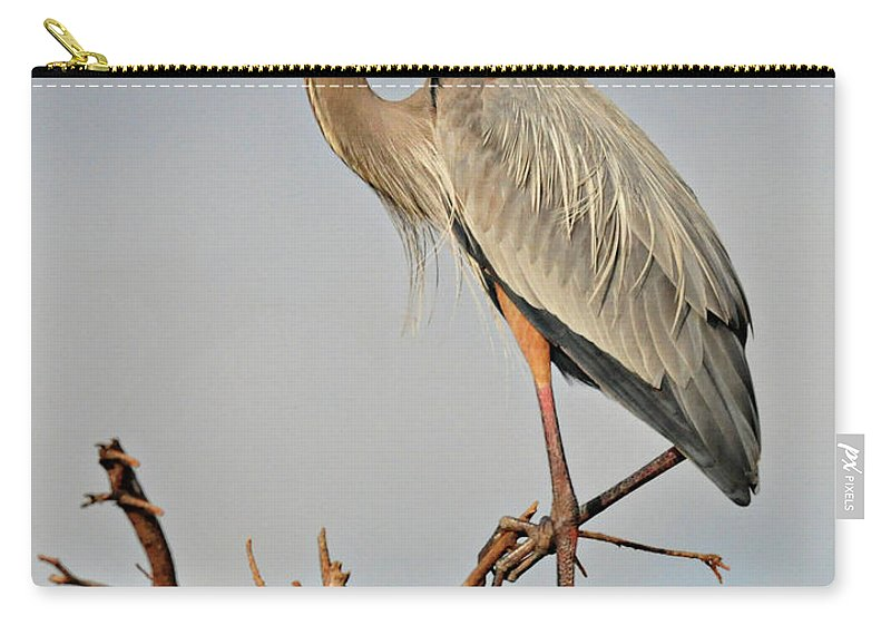 Great Blue Heron Carry-all Pouch featuring the photograph Great Blue Heron In Habitat by Dave Mills