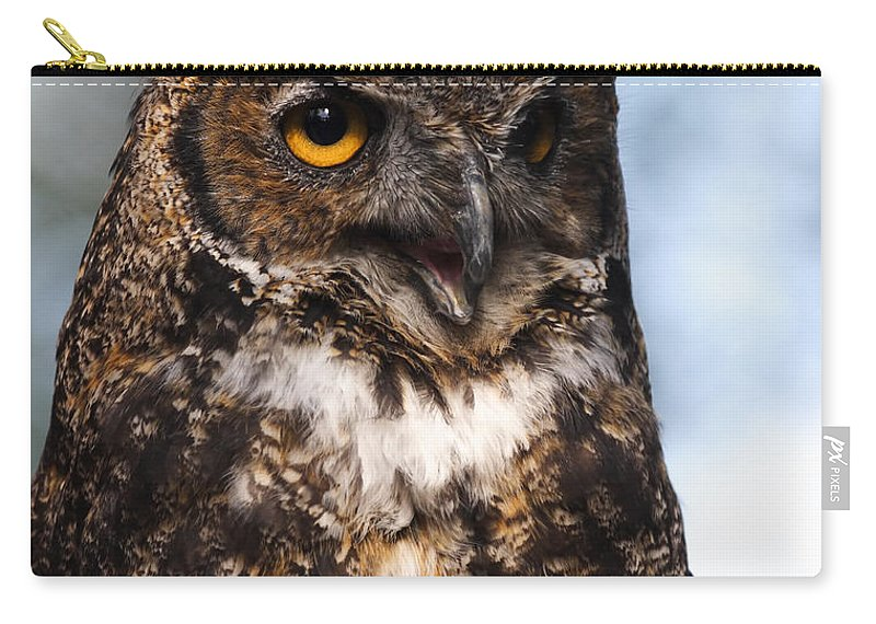 Doug Lloyd Carry-all Pouch featuring the photograph Great Horned Owl Portrait by Doug Lloyd